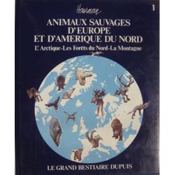 L'Artique - Les forêts du nord - La montagne