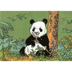 Jeannette Pointu - Panda