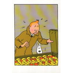 Tintin - Le crabe aux pinces d'or