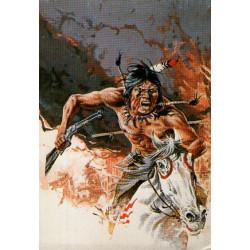 Comanche - Furie rebelle
