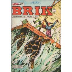 Brick (170) - Le corsaire de fer