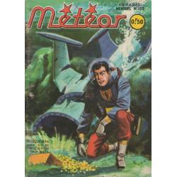 Météor (159) - Le trésor de Malvern