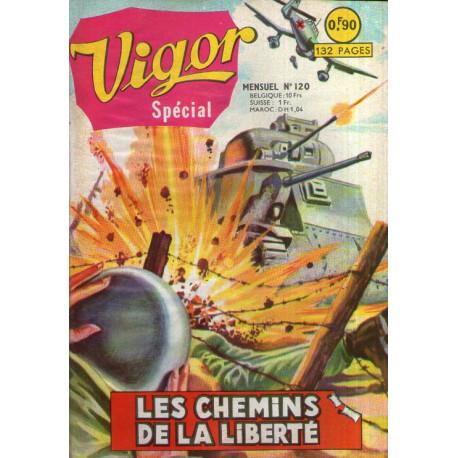 1-vigor-120