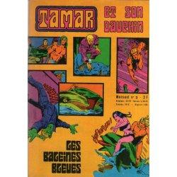 Tamar et son dauphin (3) - Les baleines bleues