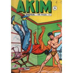 Akim (240) - La chasse au trésor
