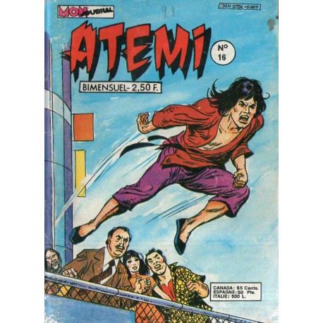 1-atemi-16
